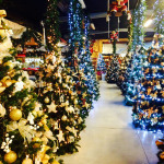 greenvillage-villaggio-di-natale (8)