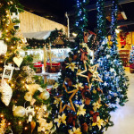 greenvillage-villaggio-di-natale (9)