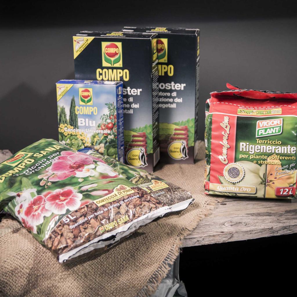 Cura delle piante | GreenVillage