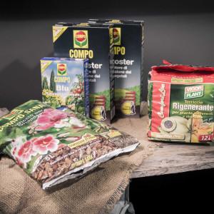 greenvillage-garden-cura delle piante (3)